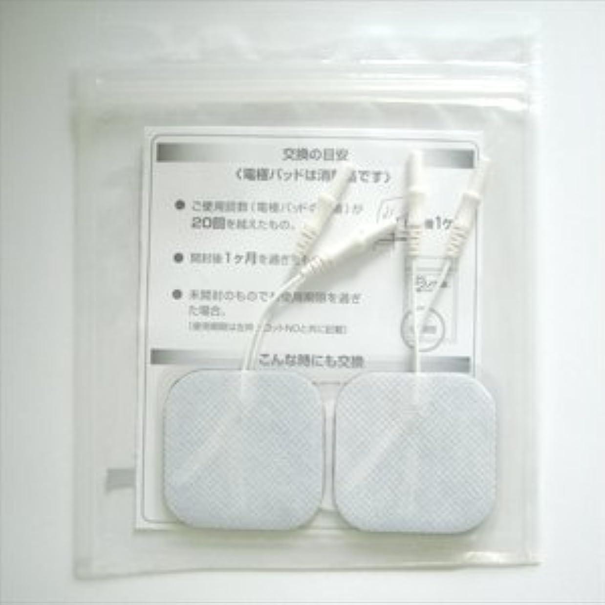 官僚定数【積水化成品工業】テクノゲル低周波電極パッド(中)5cm×5cm(1袋4枚入)