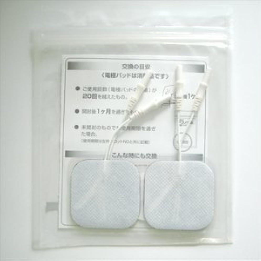 馬鹿女王十分です【積水化成品工業】テクノゲル低周波電極パッド(中)5cm×5cm(1袋4枚入)