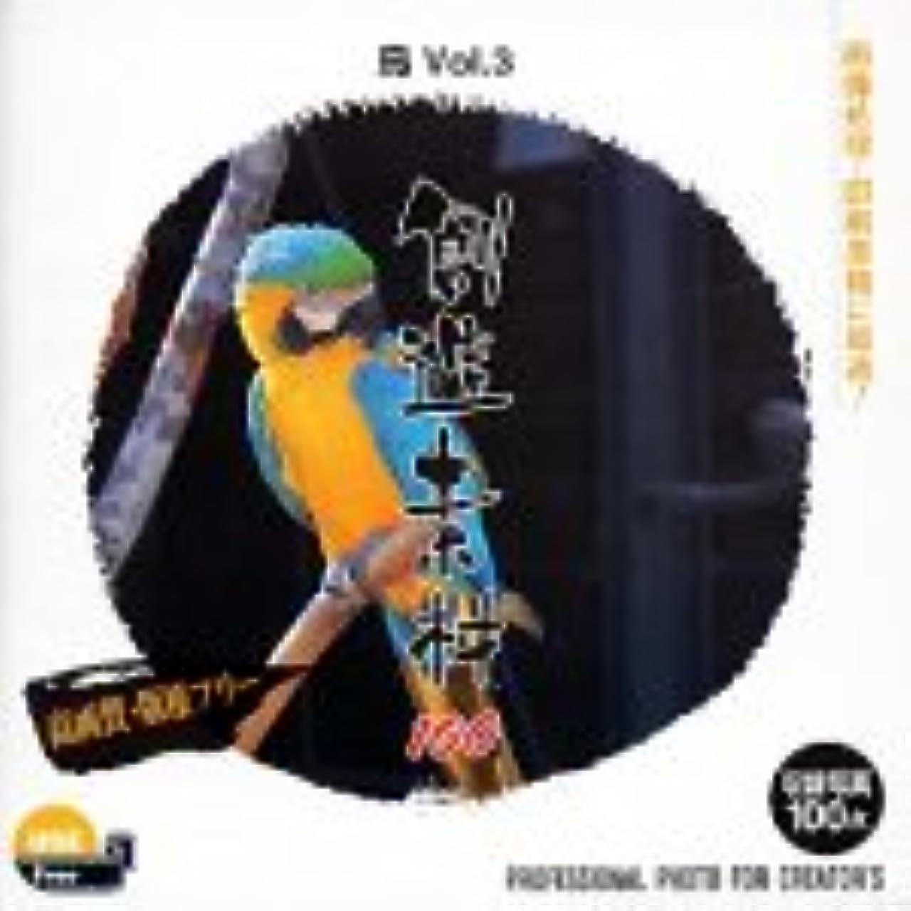 創造素材100 鳥 Vol.3