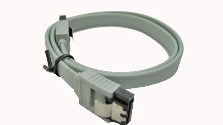 リズムピグマリオンに付けるXion XON-SATA1818ML_Silverメタルラッチケーブル付き18インチSATA II - 小売(シルバー)