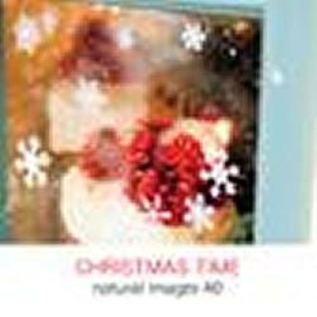 ポルノオレンジ検体natural images Vol.40 CHRISTMAS TIME