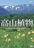 高山植物/花々が咲く、名山を歩く [DVD]