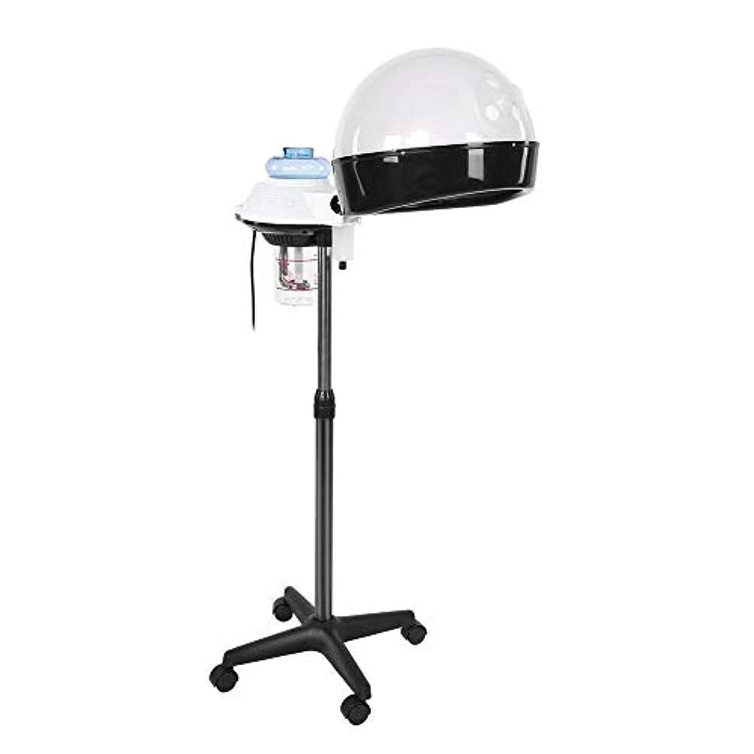 病な捧げるサスペンションヘア 加湿器 パーソナルケア用のデザイン ホットミストオゾンヘアセラピー美容機器 個人用家庭用 (US)