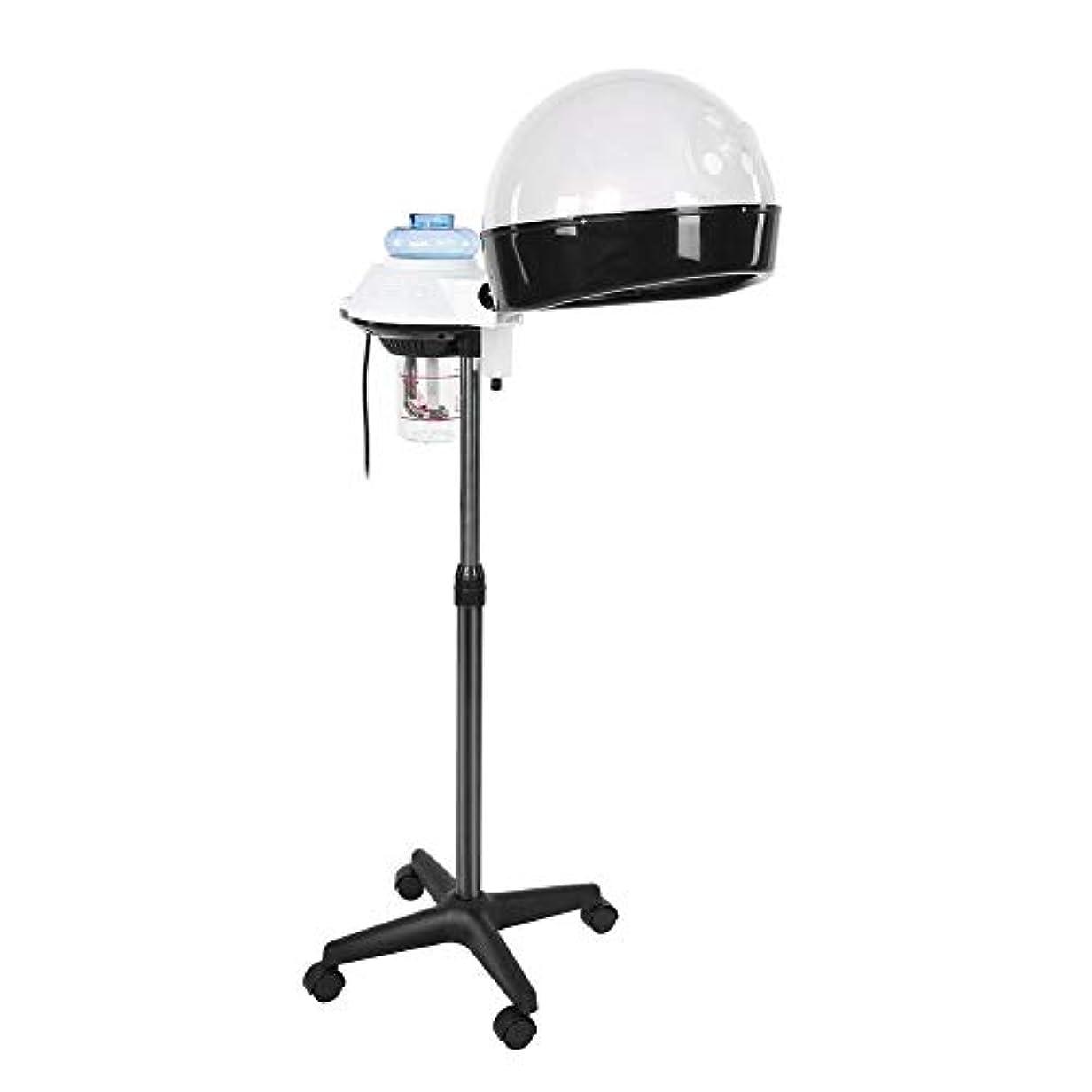 機会罰キャリアヘア 加湿器 パーソナルケア用のデザイン ホットミストオゾンヘアセラピー美容機器 個人用家庭用 (US)