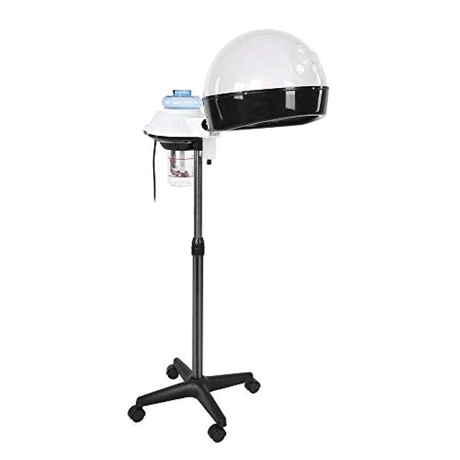 上級戦う名前でヘア 加湿器 パーソナルケア用のデザイン ホットミストオゾンヘアセラピー美容機器 個人用家庭用 (US)