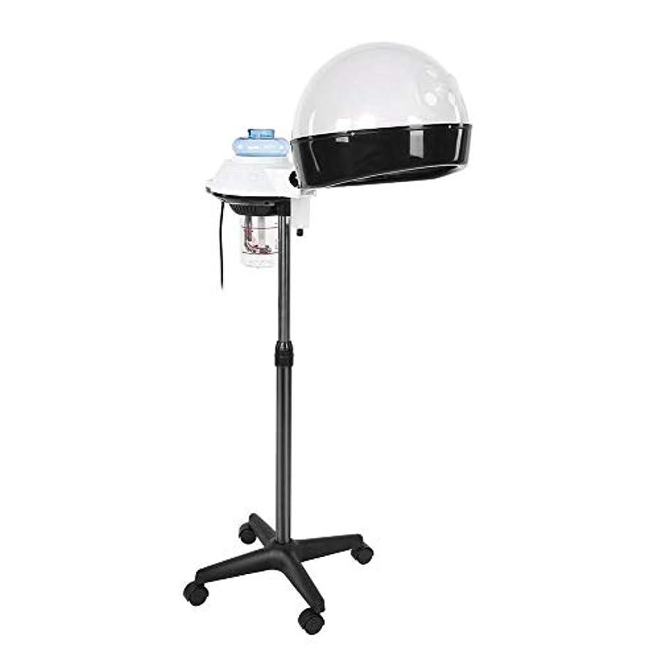 許される彼らは出しますヘア 加湿器 パーソナルケア用のデザイン ホットミストオゾンヘアセラピー美容機器 個人用家庭用 (US)