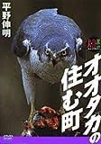 DVD>オオタカの住む町―[大自然ライブラリー] [小学館DVDマガジン] (<DVD>)
