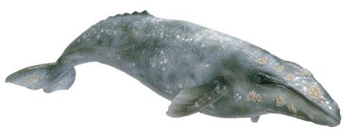 Schleich シュライヒ コククジラ