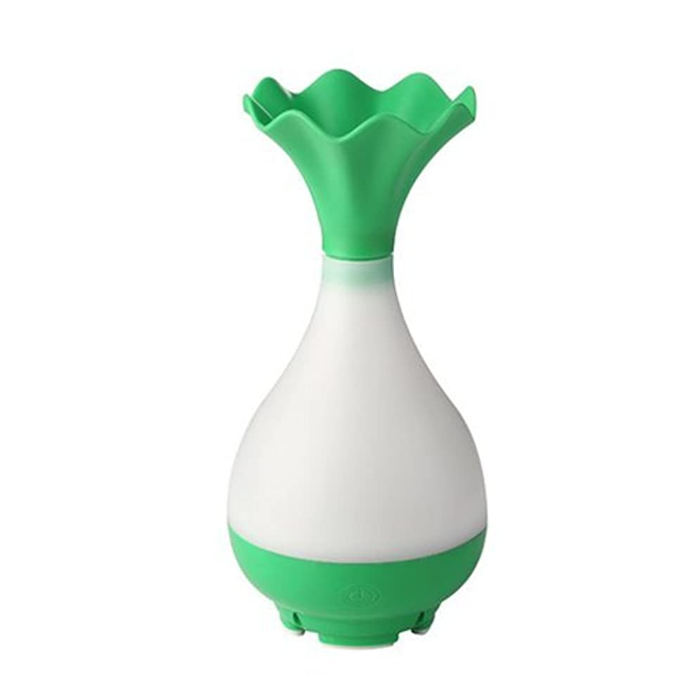 しばしば優しい胃Mystic Moments | Green Vase Bottle USB Aromatherapy Oil Humidifier Diffuser with LED Lighting