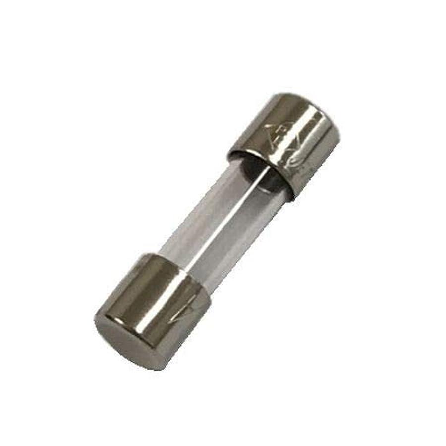 オーブン検体救出ガラス管ヒューズ FGMB 250V 0.1A PbF (2個入) FGMB25001-02P
