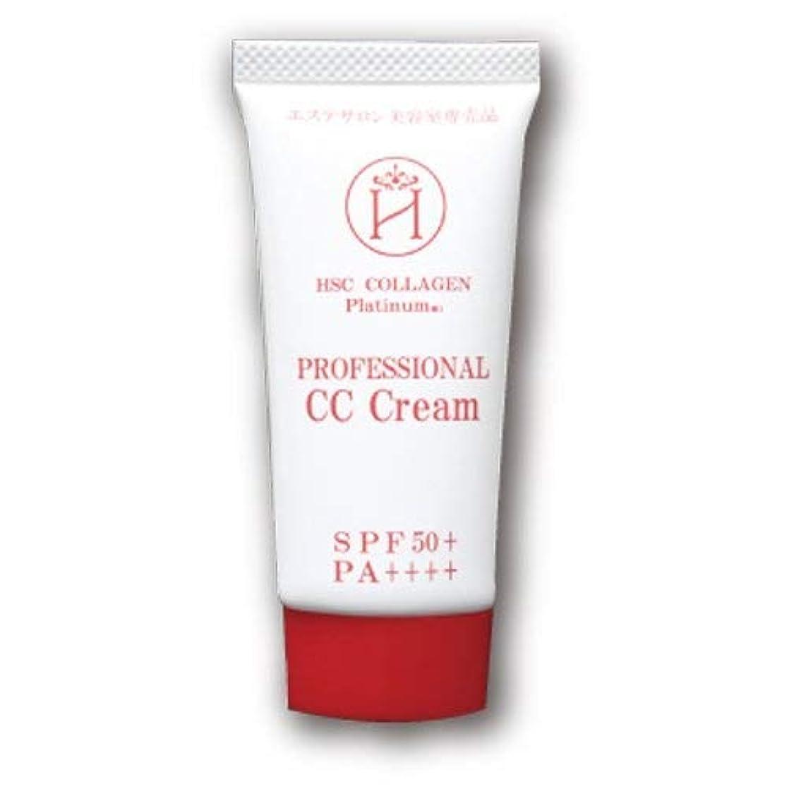 美容師検索エンジンマーケティング架空のPROFESSIONAL CC Cream
