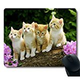 Four Cute Baby Cat Kitten Stand with Flower Customized Mouse Pad