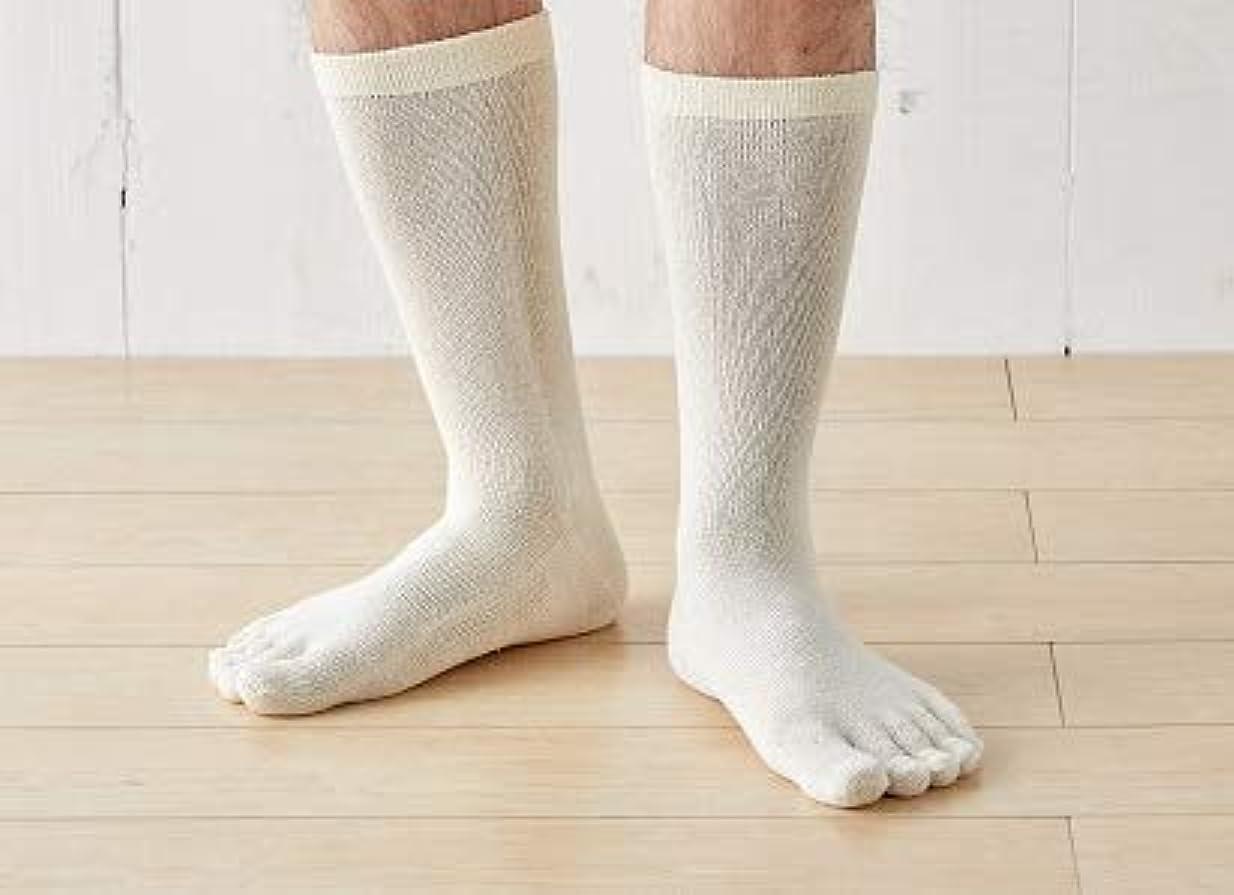 慈悲祈り小屋2足組 これが定番 シルク 5本指靴下 メンズ におい ムレ 対策 24-26cm 太陽ニット S7-2P