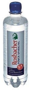 [2cs]Rosbacher(ロスバッハー) パワースパークリング 500ml×24本×2ケース