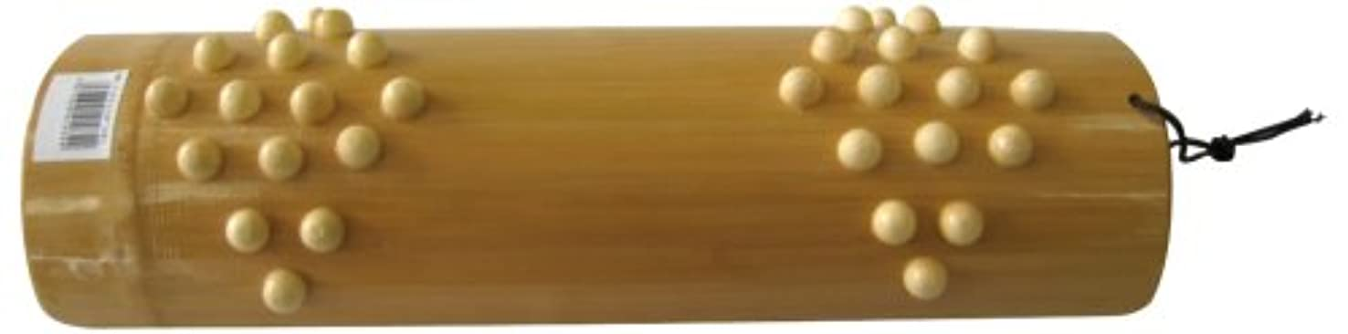 型傷つきやすい生きている星野 イボ付ふみ竹