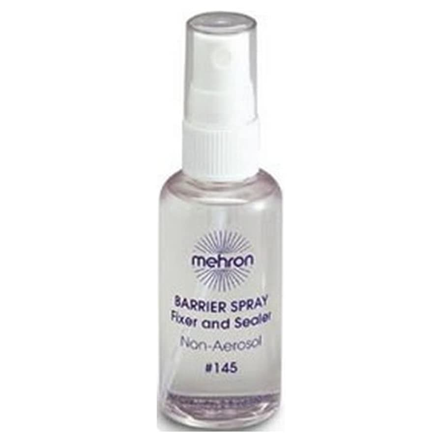 どうやら篭先(6 Pack) mehron Barrier Spray Fixer and Sealer - Clear (並行輸入品)