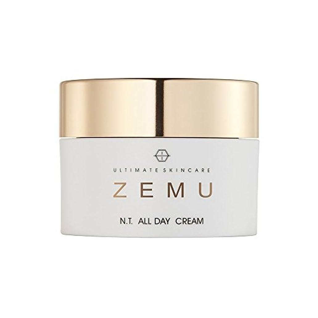 剥離生ふつうUltimate skincare ZEMU エヌティ オールデイクリーム(N. T. ALL DAY CREAM)