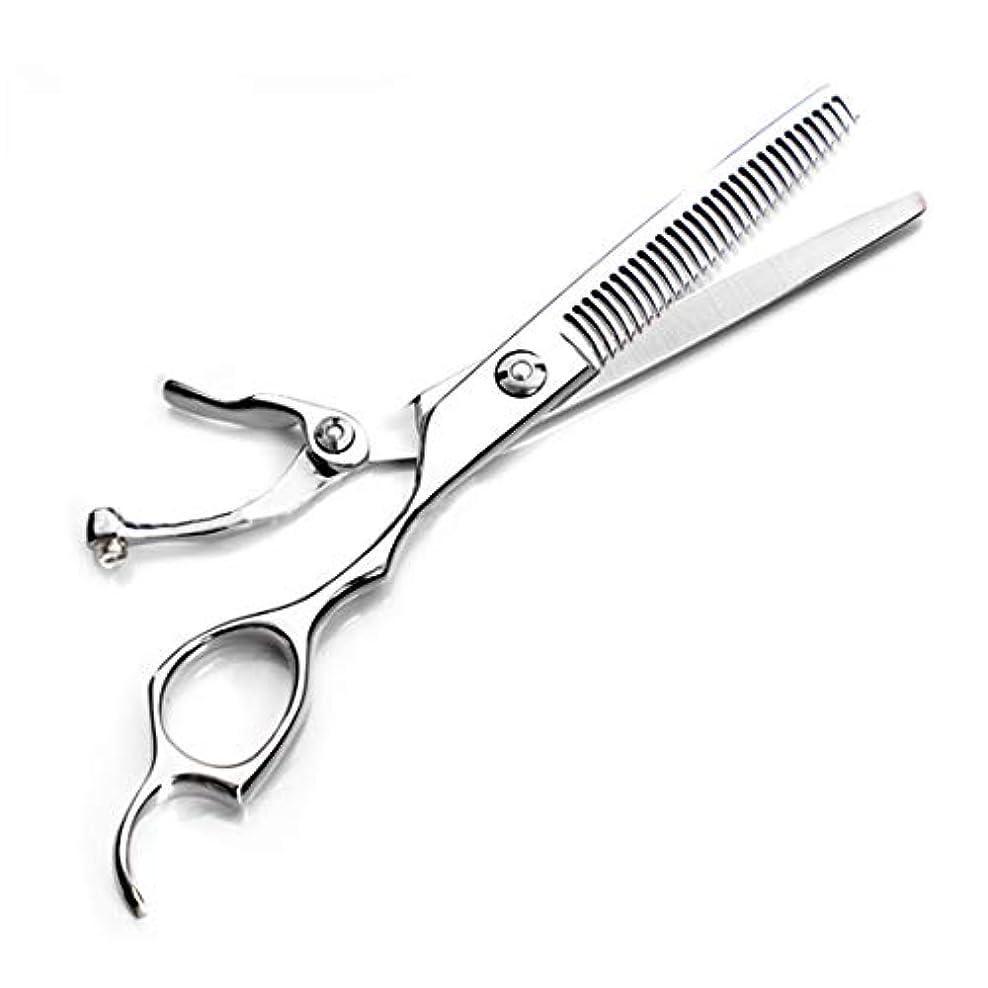 安息仮定するローズ(シルバー)プロ用はさみキット - フラットはさみ/歯はさみ/細いはさみカット用はさみサイズ6