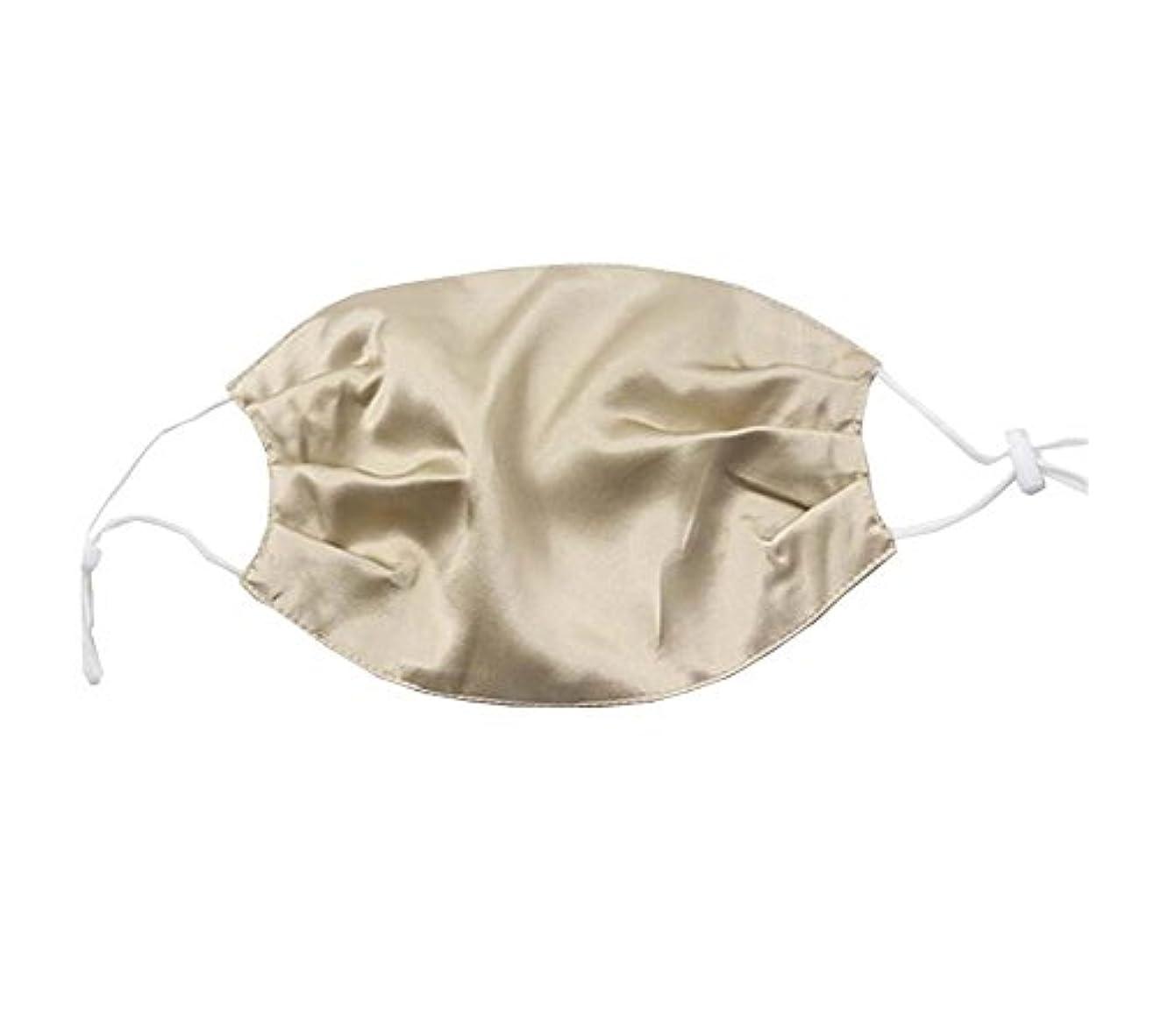 位置づけるレオナルドダ影響する少女と女性のためのエレガントな通気性の柔らかいシルクの口のマスク