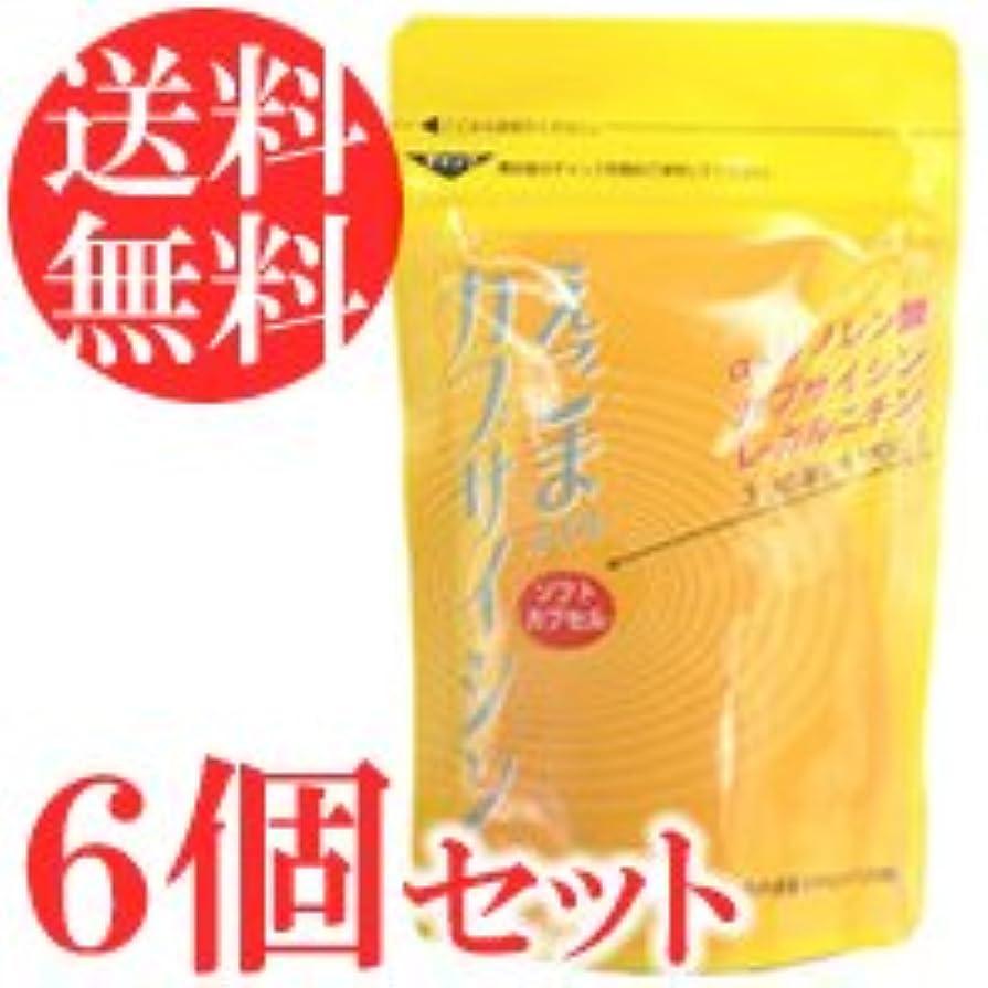 悪党減衰蜂えごまオイル カプサイシン 120粒×6袋セット(ソフトカプセル)
