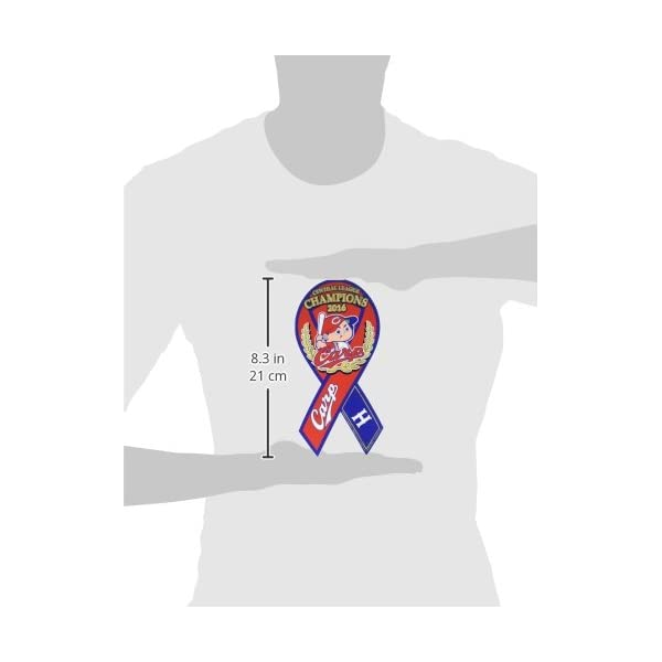 RibbonMagnet(リボンマグネット) ...の紹介画像2