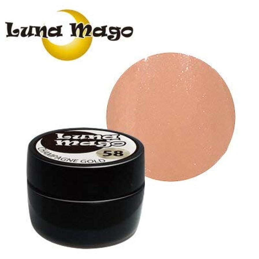 吸収曇った銀行Luna Mago カラージェル 5g 025 ヌーディ