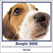HCL-723 THE DOGビーグルカレンダー2006