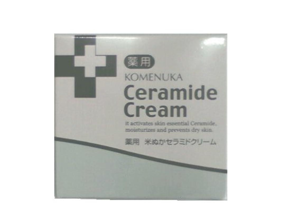疑わしい温度計クマノミリアル 薬用 米ぬかセラミドクリーム58g