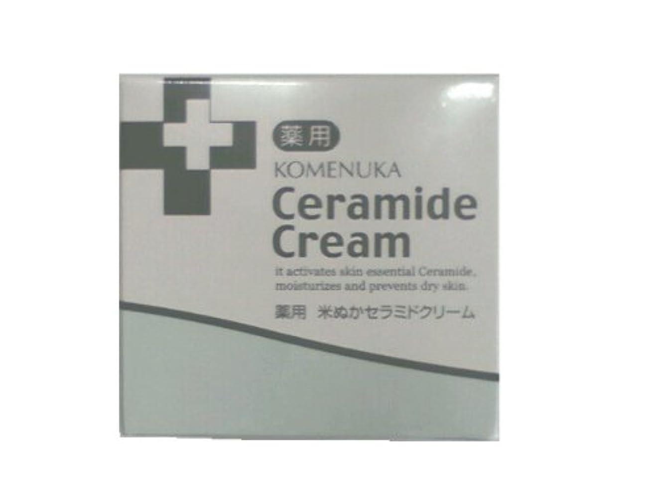 穴同意する見るリアル 薬用 米ぬかセラミドクリーム58g
