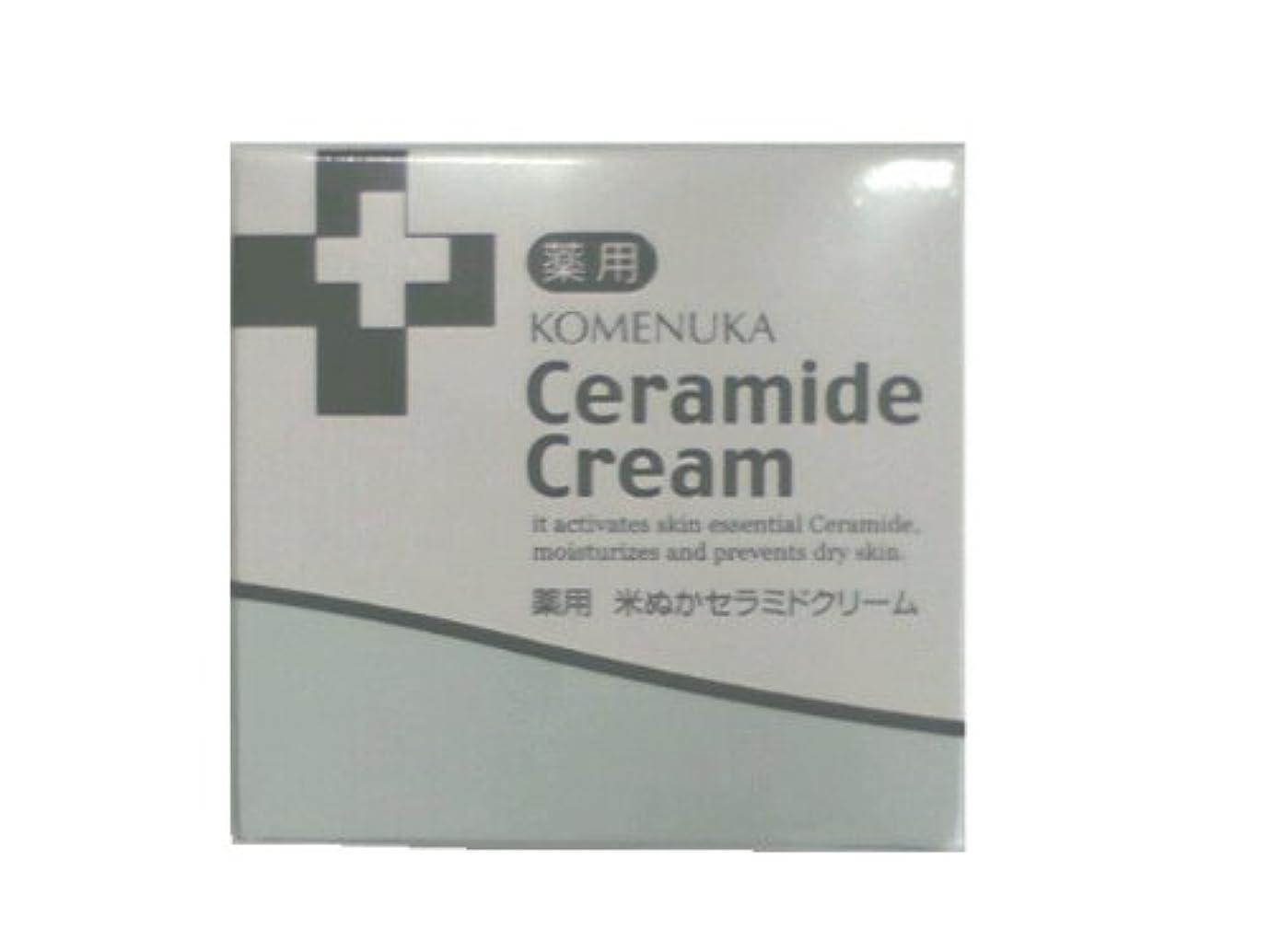 ハンディキャップ買い物に行くインクリアル 薬用 米ぬかセラミドクリーム58g