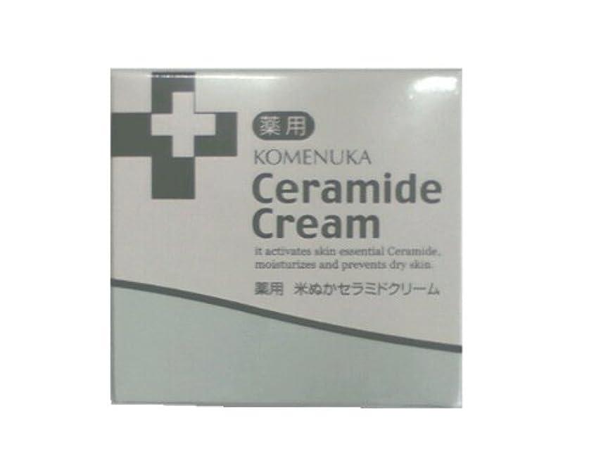 気分有名不定リアル 薬用 米ぬかセラミドクリーム58g