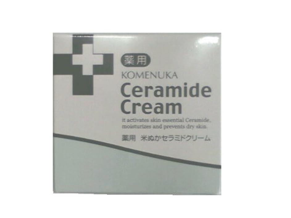 バーチャル鎮痛剤よく話されるリアル 薬用 米ぬかセラミドクリーム58g