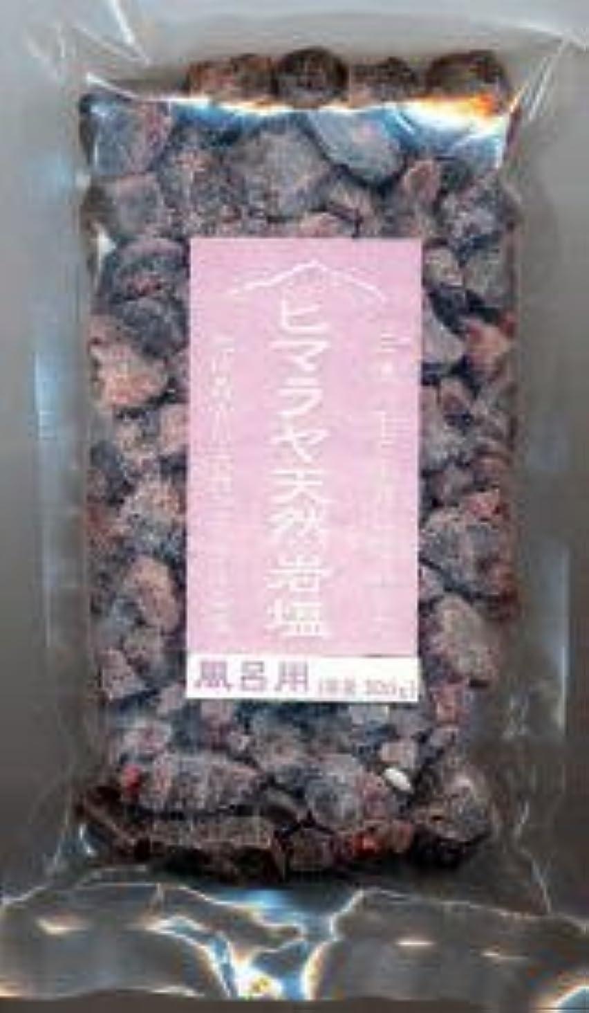 未亡人飢えた値する風呂用天然ヒマラヤ岩塩 500g