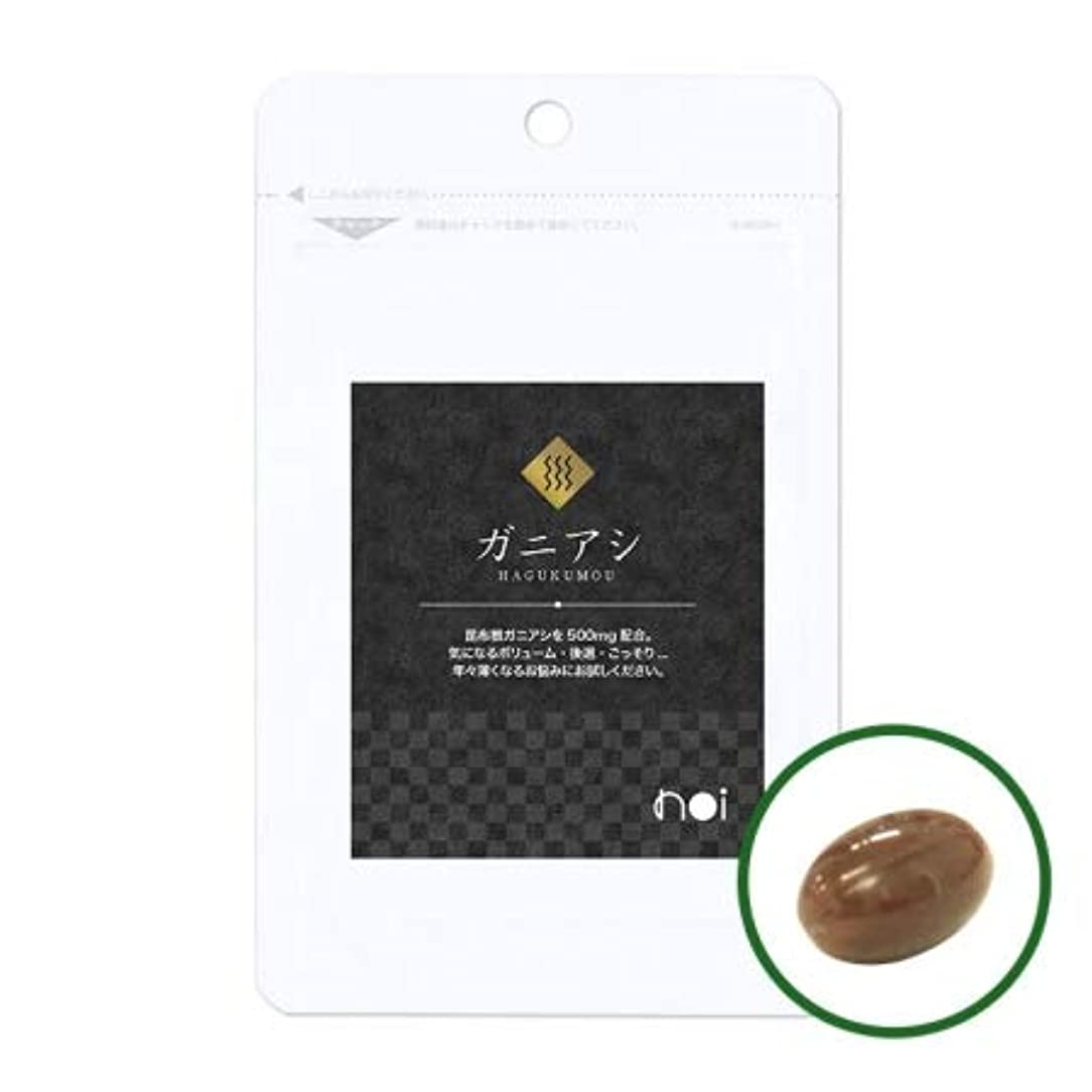 朝珍味フェリーnoi ガニアシ アグリマックス サプリメント 30袋セット 国産 ギガ盛り30%OFF