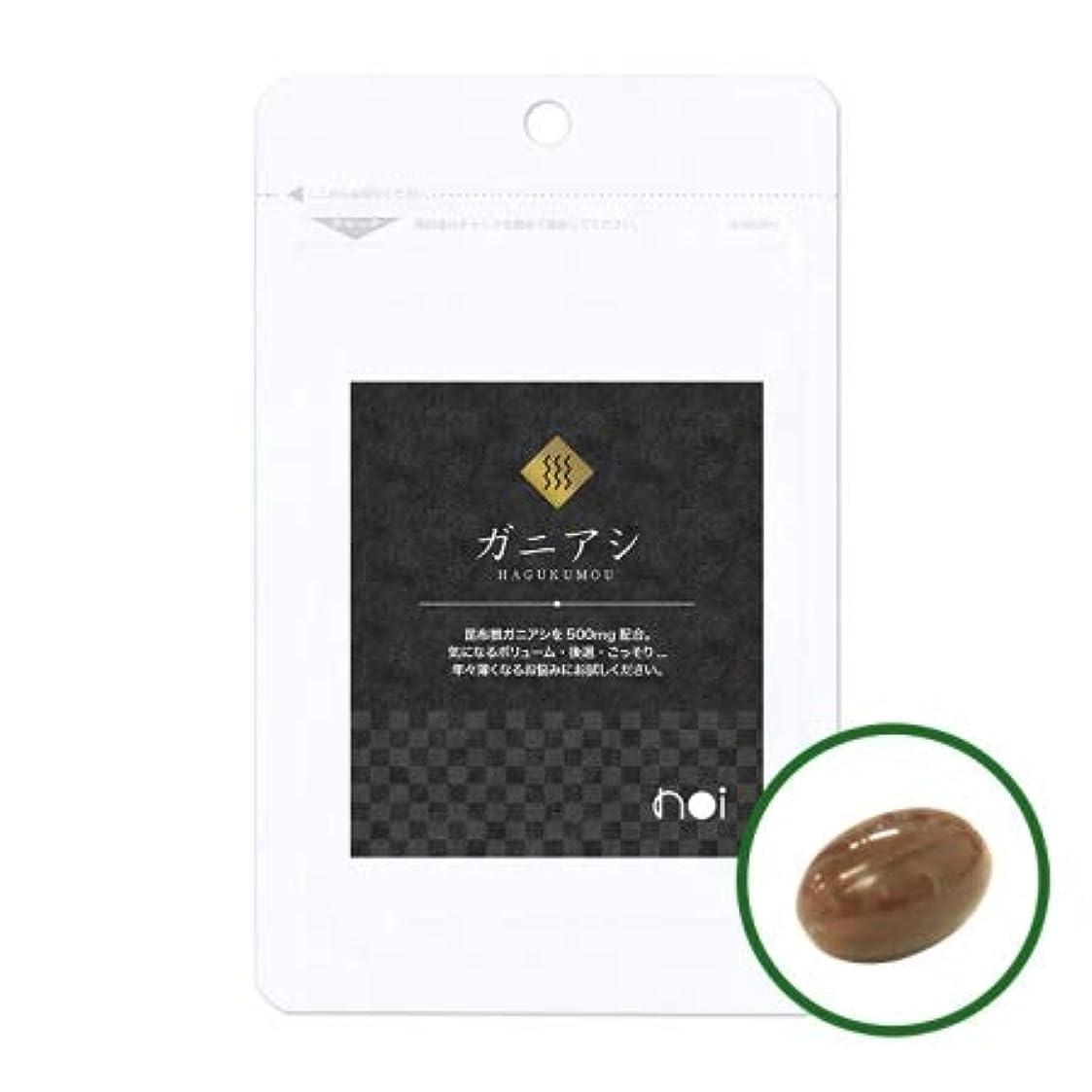 モルヒネ骨の折れるかび臭いnoi ガニアシ アグリマックス サプリメント 30袋セット 国産 ギガ盛り30%OFF