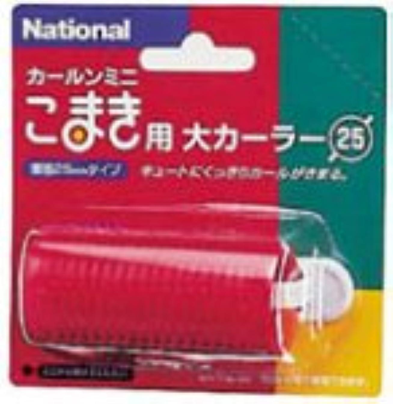 君主制聖歌クラッチPanasonic 大カーラー(直径25mm) 赤 EH9041RP