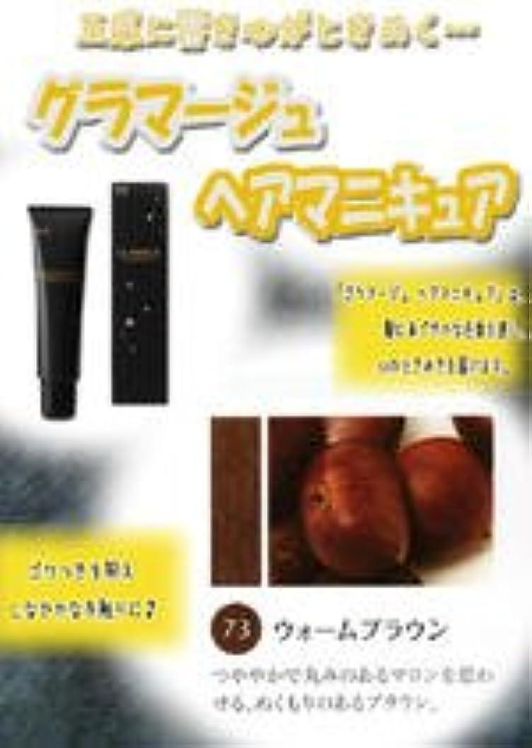神秘涙雑草HOYU ホーユー グラマージュ ヘアマニキュア 73 ウォームブラウン 150g 【ブラウン系】