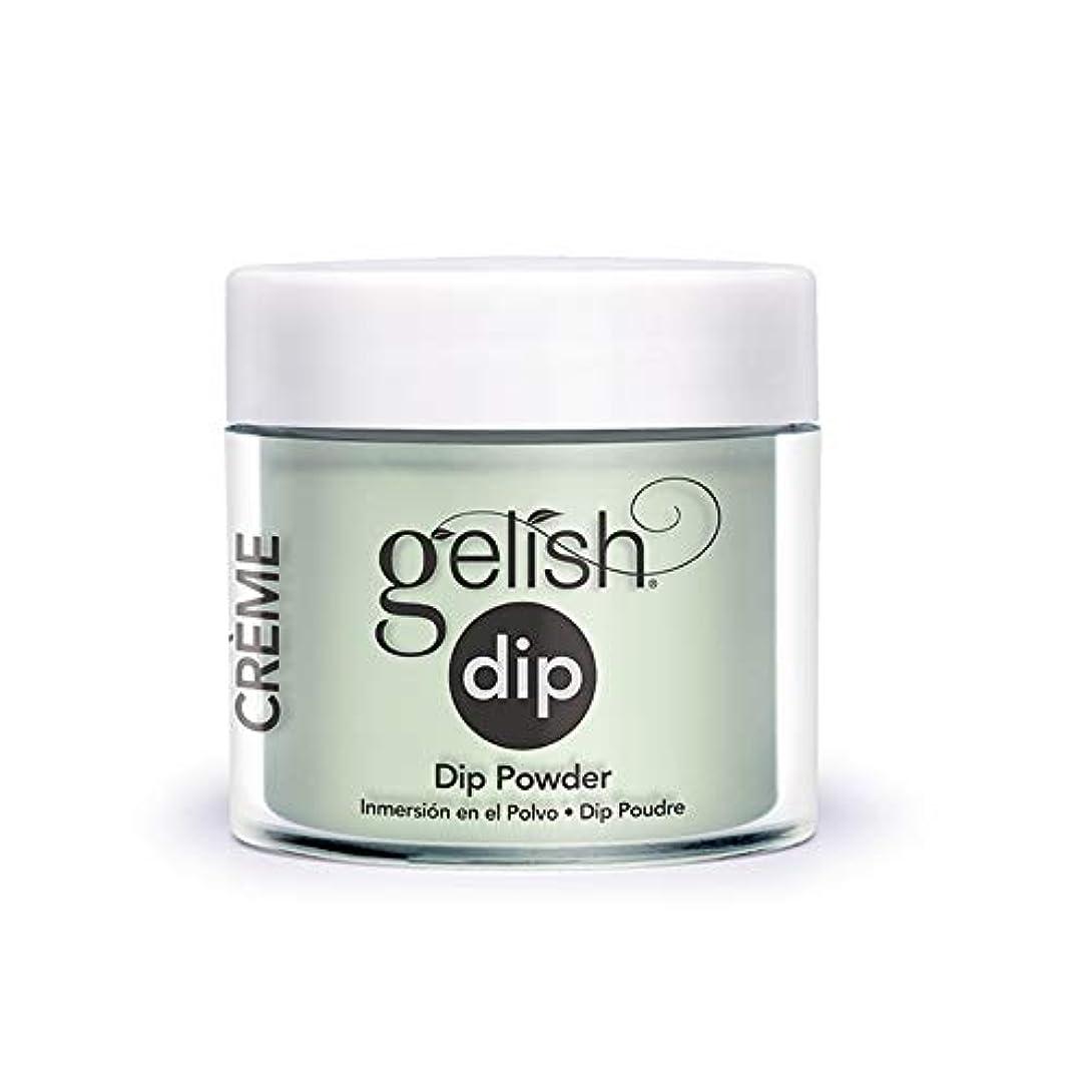 どんなときも予知ジュニアHarmony Gelish - Acrylic Dip Powder - Mint Chocolate Chip - 23g / 0.8oz