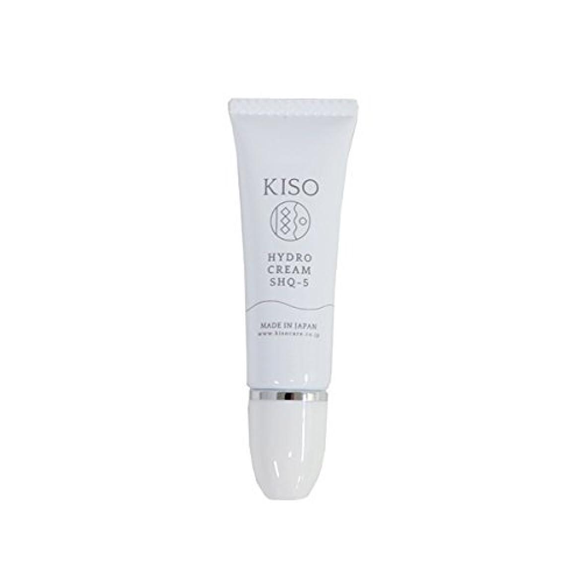 有名な踏み台寝室KISO 安定型 ハイドロキノン 5%配合【ハイドロ クリーム SHQ-5 10g】スキンケアで肌を整えた後にちょこっとケア 日本製
