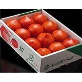 初恋の味 群馬産 『初恋トマト』《秀品》 S~Lサイズ 8~16玉 約900g 【御祝・贈答品・ギフト】