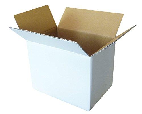 ボックスバンク ダンボール(段ボール箱)100サイズ 白 5枚セット 引越し・収納 FW06-0001