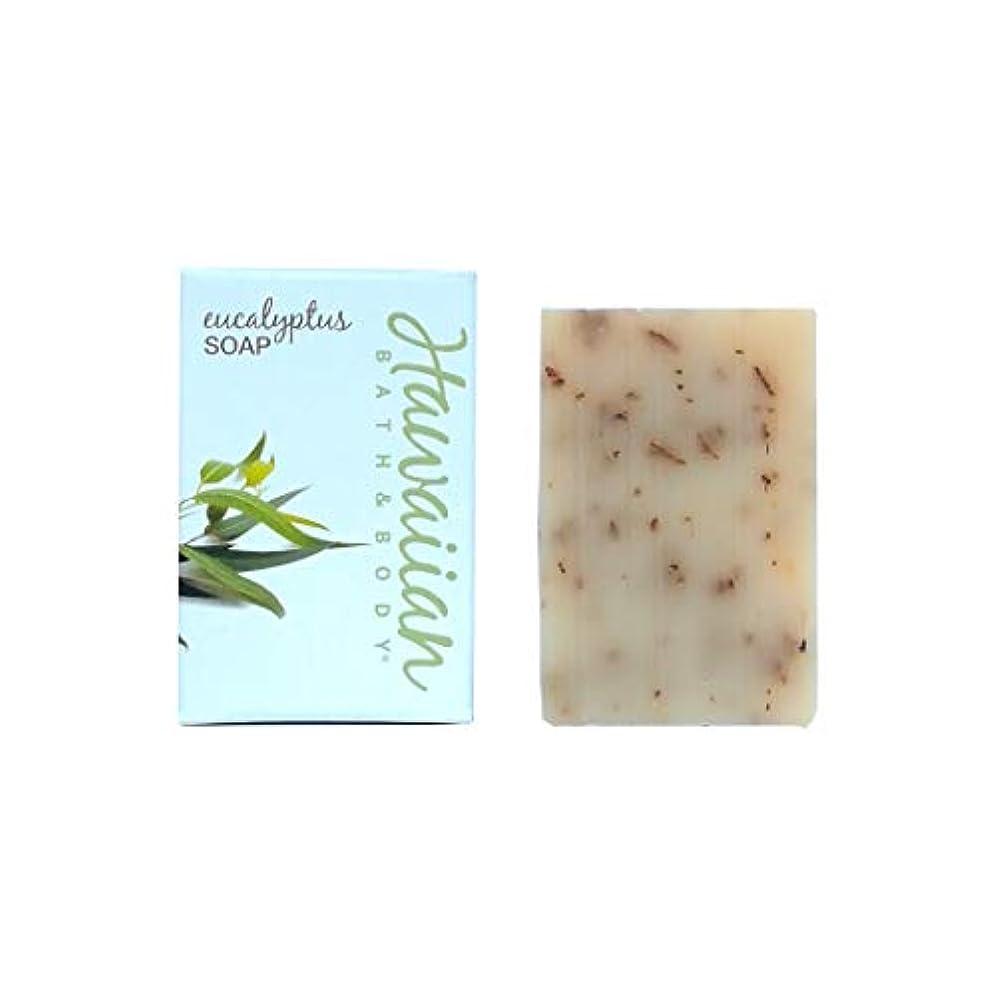 清めるスキャンダラス保守可能ハワイアンバス&ボディ ユーカリソープ (Eucalyptus Soap)