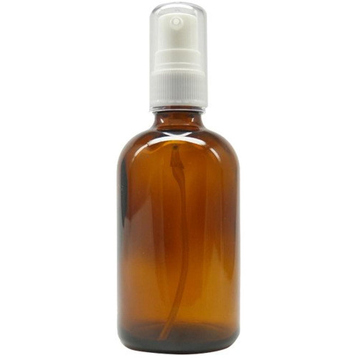 アロマアンドライフ (D)茶褐色ポンプ瓶100ml 3本セット