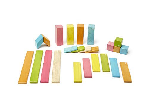 Tegu Magnetic Wooden Blocks 24pc - Tints