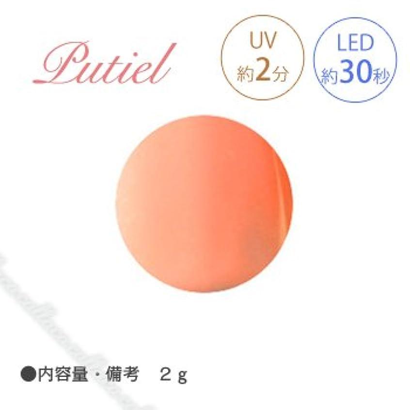 聡明使役原子Putiel プティール カラージェル 103 ブラッドオレンジ 2g