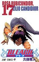 BLEACH 17 (ジャンプコミックス)の詳細を見る