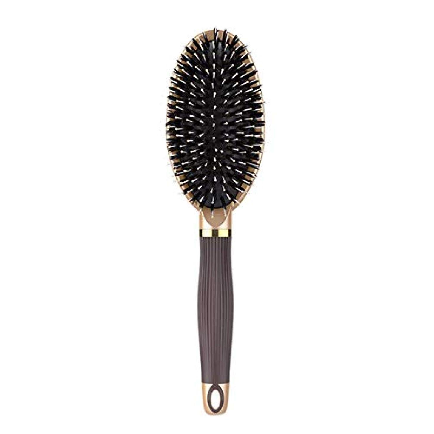 彼ら反射ポスト印象派RETYLY ヘアブラシイノシシ剛毛ヘアブラシと濡れた髪または乾いた髪に最適な作品髪を矯正して滑らかにするためにデザイン 女性&男性用