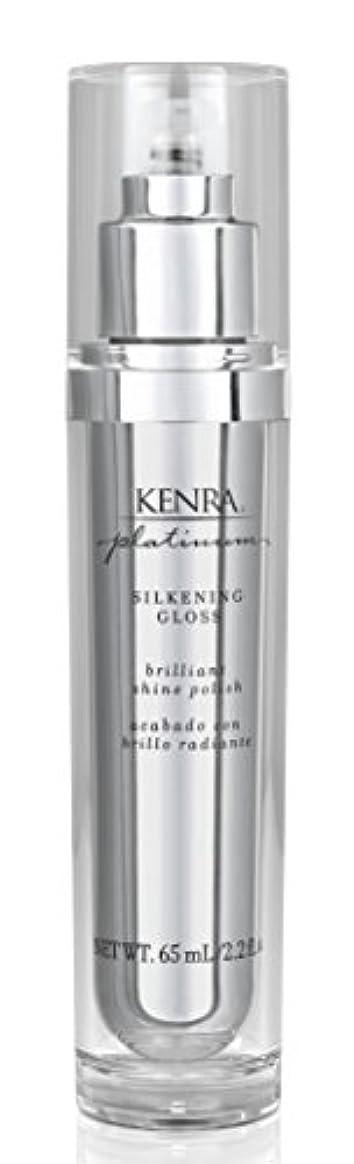 スナッチ冊子何かKenra Platinum Silkening Gloss 65 ml or 2.26oz (並行輸入品)