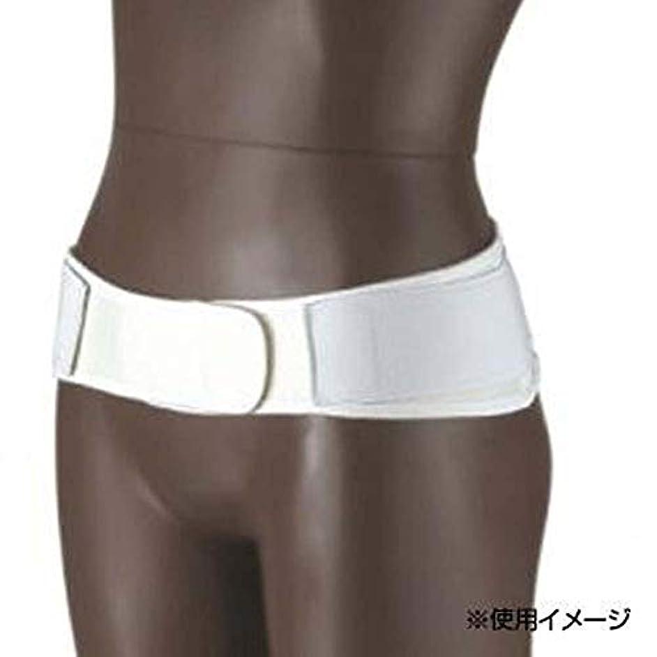 不正きらめき防腐剤日本衛材 骨盤固定用 ペルフィックス 1個 3L(100~110cm)?NE-2145