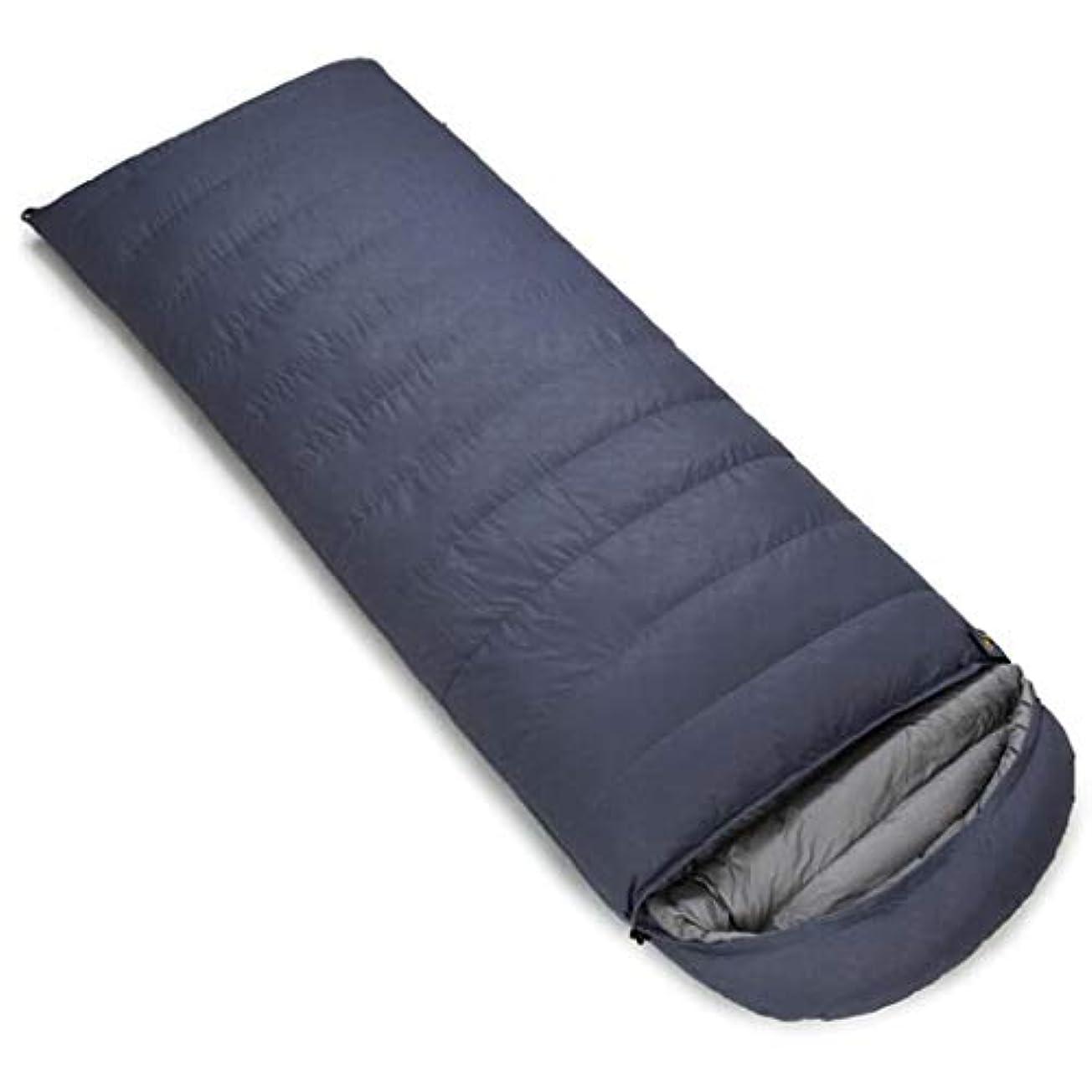 流す大きい唯物論屋外キャンプ用寝袋屋外縫製ダブル寝袋ポータブル圧縮寝袋 (Capacity : 3.0kg, Color : Gray)
